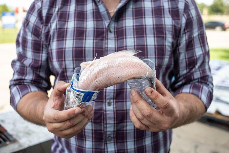 Fish and plastic